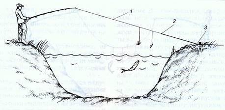 ловля голавля на резинку