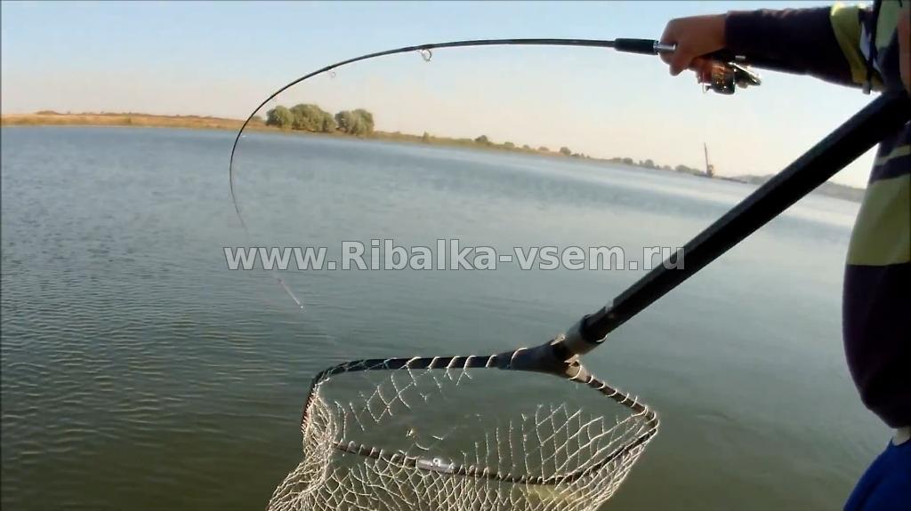рыбалка на селенг