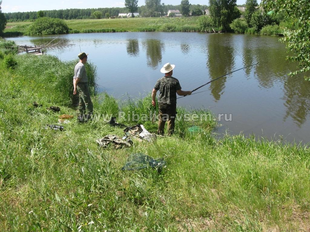 живагинские пруды рыбалка
