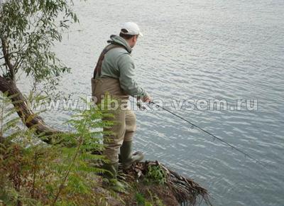Как ловить налима осенью и на какие снасти и приманки