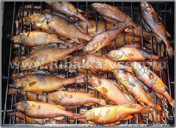 Как правильно коптить рыба в домашних условиях 617