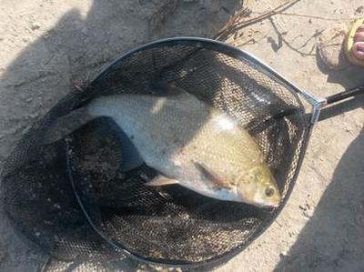 Моя рыбалка