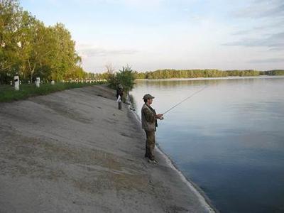 Как выбрать удилище новичку для летней рыбалки по параметрам
